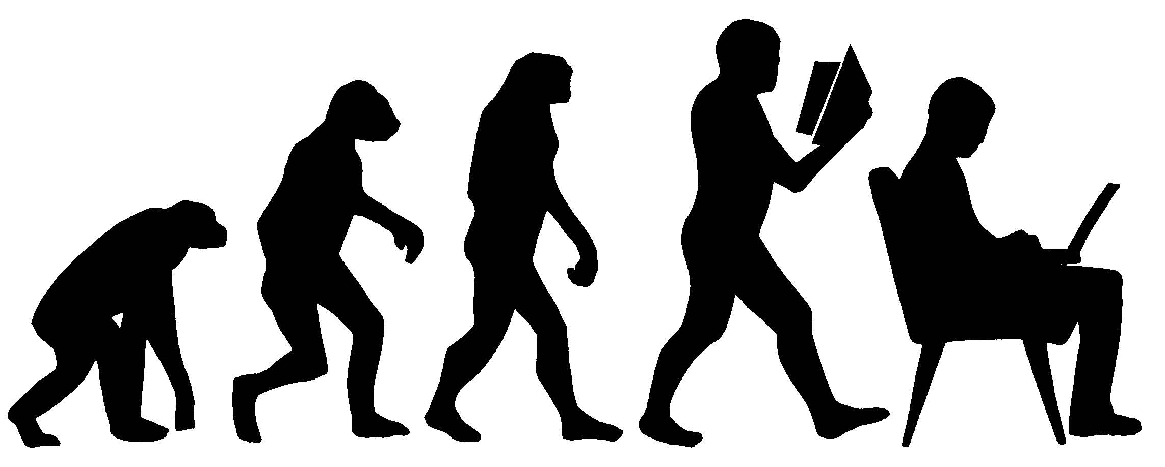illustration of ape moving to hominids and then humans with books and computer