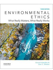 Environmental Ethics- What Really Matters book cover with a painting of a ravine